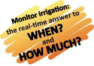 Irrigation: when and how much?